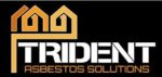 Trident Surveying Ltd